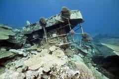 Vrachtschip Kormoran van het wrak - daalde in 1984 Tiran Stock Fotografie