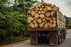 Vrachtwagen die hout vervoeren Stock Afbeeldingen