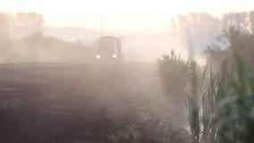 Vrachtwagen die mistig bos kruisen