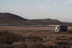 Vrachtwagen op weg op woestijn stock foto's