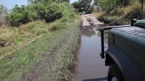 Vrachtwagenritten over moeras in Botswana stock video