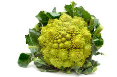 Vractal Romanesco cabbage  Royalty Free Stock Photography
