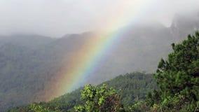 Vrai arc-en-ciel sur la forêt tropicale banque de vidéos