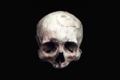 Vrai crâne humain sur un fond noir d'isolement photographie stock libre de droits