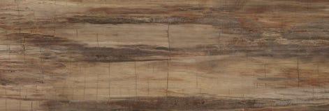 Vrai fond en bois naturel de texture et de surface Photo libre de droits