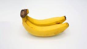 Vraie banane deux Photographie stock libre de droits