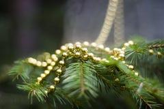 Vraie branche de sapin avec des décorations Photographie stock libre de droits