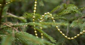 Vraie branche de sapin avec des décorations Photos stock