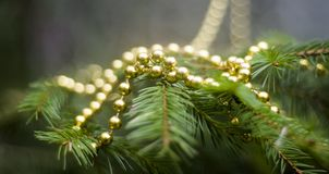 Vraie branche de sapin avec des décorations Photographie stock