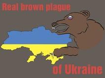 Vraie peste brune de l'Ukraine Photo stock