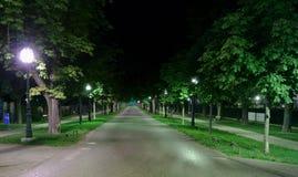 VrapÄ  anska Aleja Zagreb nocą Obraz Royalty Free