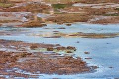 Vravrona Wetland Stock Photos