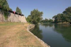 Vrbas brzeg rzeki Zdjęcia Stock