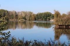 Vrbenský pond near české Budéjovice, South Bohemia. Czech republic royalty free stock images