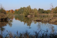 Vrbenský pond near české Budéjovice, South Bohemia. Czech republic royalty free stock photo