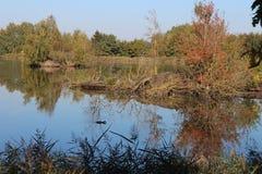 Vrbenský pond near české Budéjovice, South Bohemia. Czech republic royalty free stock image