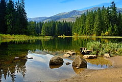 Vrbicke山湖低Tatras斯洛伐克 库存照片