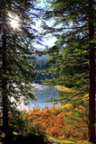 Vrbicke pleso Royalty Free Stock Photos