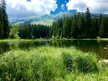 Vrbicke Pleso, Demanovska Dolina, Slovakien Arkivfoton