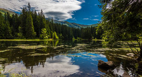 Vrbicke tarn reflection. Photo was taken in Low Tatras national park - Jasna, Demanovska valley, Slovakia royalty free stock images