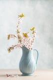 Vårblomning Royaltyfri Fotografi