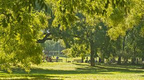 Vrchlickeho sady recreation park in Prague Stock Images