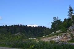 Vrede en bergen stille bergen stock foto