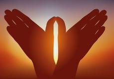 Vredessymbool met handen die de vlucht van een vogel illustreren vector illustratie