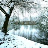 vreedzaam bevroren meer in het midden van de winter Stock Afbeelding