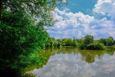 Vreedzaam die beeld van een de zomer zoetwatervisserijmeer door de bank van het meer wordt genomen stock foto