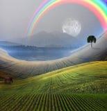 Vreedzaam landschap Stock Afbeeldingen
