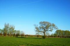 Vreedzaam landschap Stock Foto