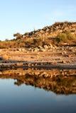 Vreedzaam landschap Stock Afbeelding