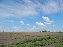 Vreedzaam landschap van blauwe hemel en geploegd gebied stock fotografie