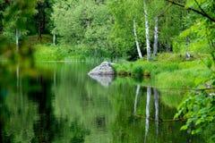 Vreedzaam meer in de zomer Stock Afbeeldingen