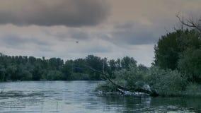 Vreedzaam meer - natuurlijk milieu - Voorraadvideo stock videobeelden