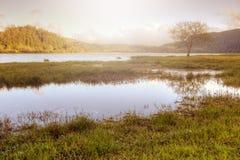 Vreedzaam meerlandschap in de Azoren, Portugal Stock Afbeeldingen