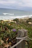 Vreedzaam OceaanStrand in Del Mar, Californië Royalty-vrije Stock Afbeeldingen