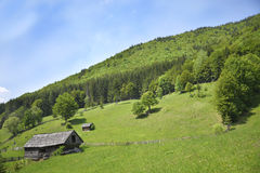 Vreedzaam plattelandsgebied Stock Afbeelding