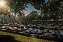 Vreedzame begraafplaats met grafstenen en bomen bij zonsondergang in Tielt Stock Afbeeldingen