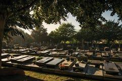 Vreedzame begraafplaats met grafstenen en bomen bij zonsondergang in Tielt Royalty-vrije Stock Afbeelding