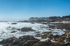 Vreedzame Bosjekust, Monterey, Californië Stock Foto