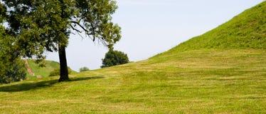 Vreedzame en bevallige heuvel met bomen Royalty-vrije Stock Fotografie