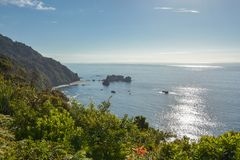 Vreedzame kust zoals die van het Vooruitzicht van het Ridderspunt, Nieuw Zeeland wordt gezien royalty-vrije stock afbeeldingen