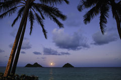 Vreedzame moonrise in Hawaï Royalty-vrije Stock Fotografie
