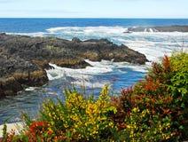 Vreedzame oceaan en kust Royalty-vrije Stock Foto