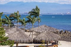 Vreedzame Oceaan met palmpalapas stock fotografie