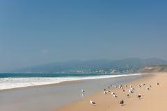 Vreedzame Oceaan in santa-Monica Royalty-vrije Stock Afbeelding