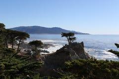Vreedzame OceaanKlippen stock foto