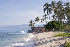 Vreedzame Oceaankust met palmen royalty-vrije stock foto